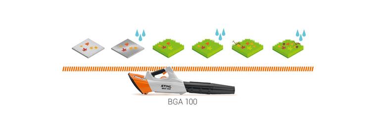 BGA 100