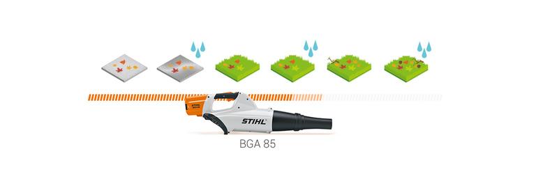 BGA 85