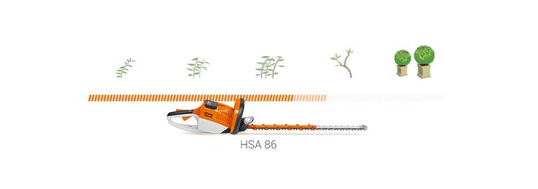 HSA 86