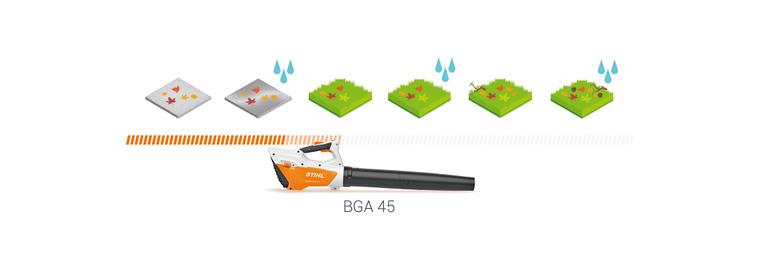 BGA 45